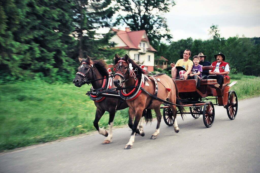 Fot. Agnieszka Bernacka/cc/flickr.com