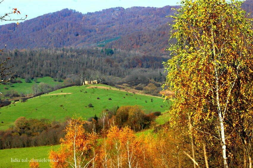 Widok na ruiny cerkwi, Krywe / fot. Lidia Tul Chmielewska