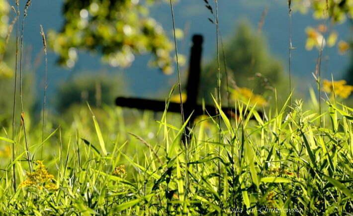 Cmentarz Radziejowa / fot. Lidia Tul-Chmielewska