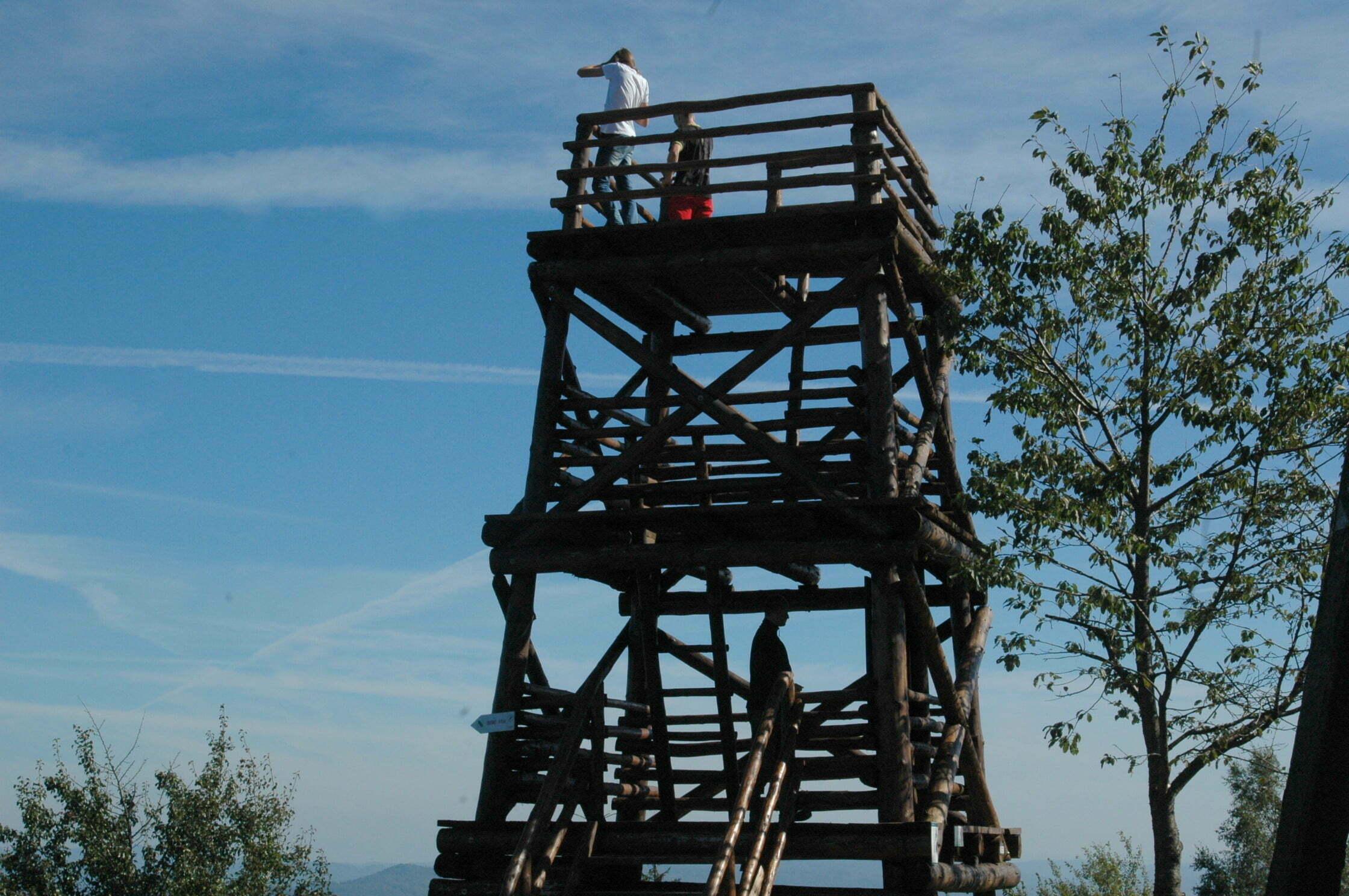 Wieża widokowa / fot. Lidia Tul-Chmielewska