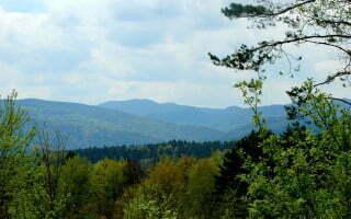 Przełęcz pod Pliszem / fot. Lidia Tul-Chmielewska
