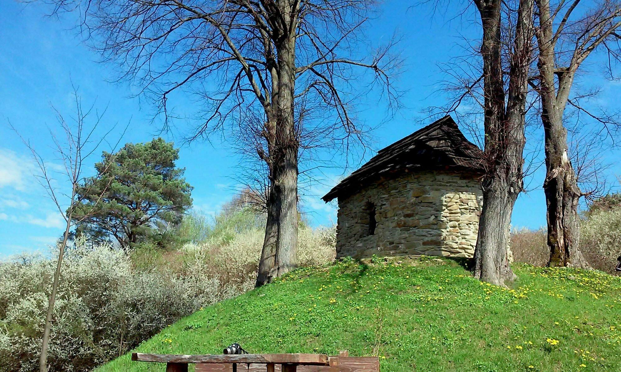 Rajskie w Hrabie / fot. Lidia Tul-Chmielewska