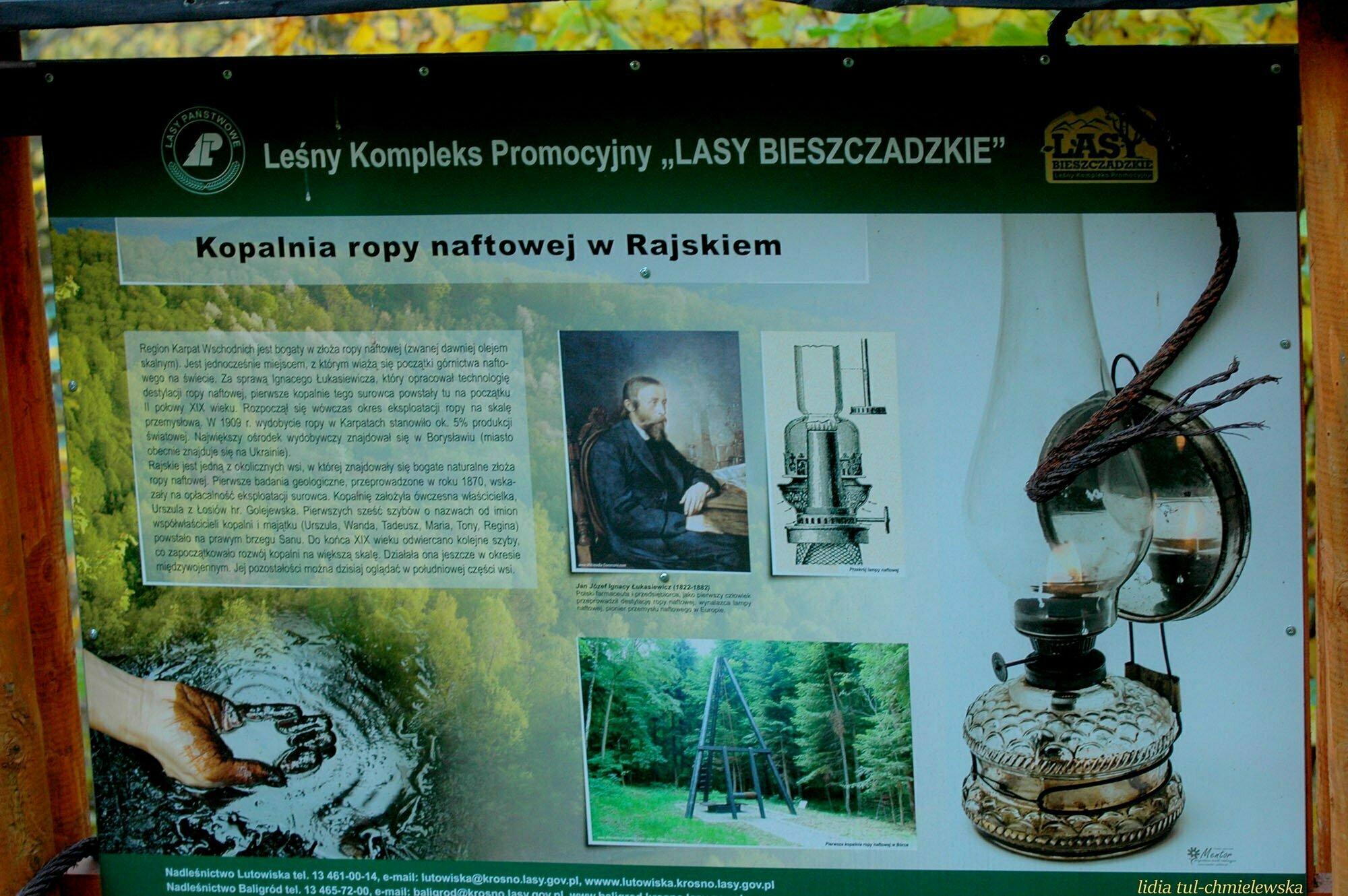 Ścieżka przyrodniczo-dydaktyczna Rajskie – Studenne – Rajskie / fot. Lidia Tul-Chmielewska