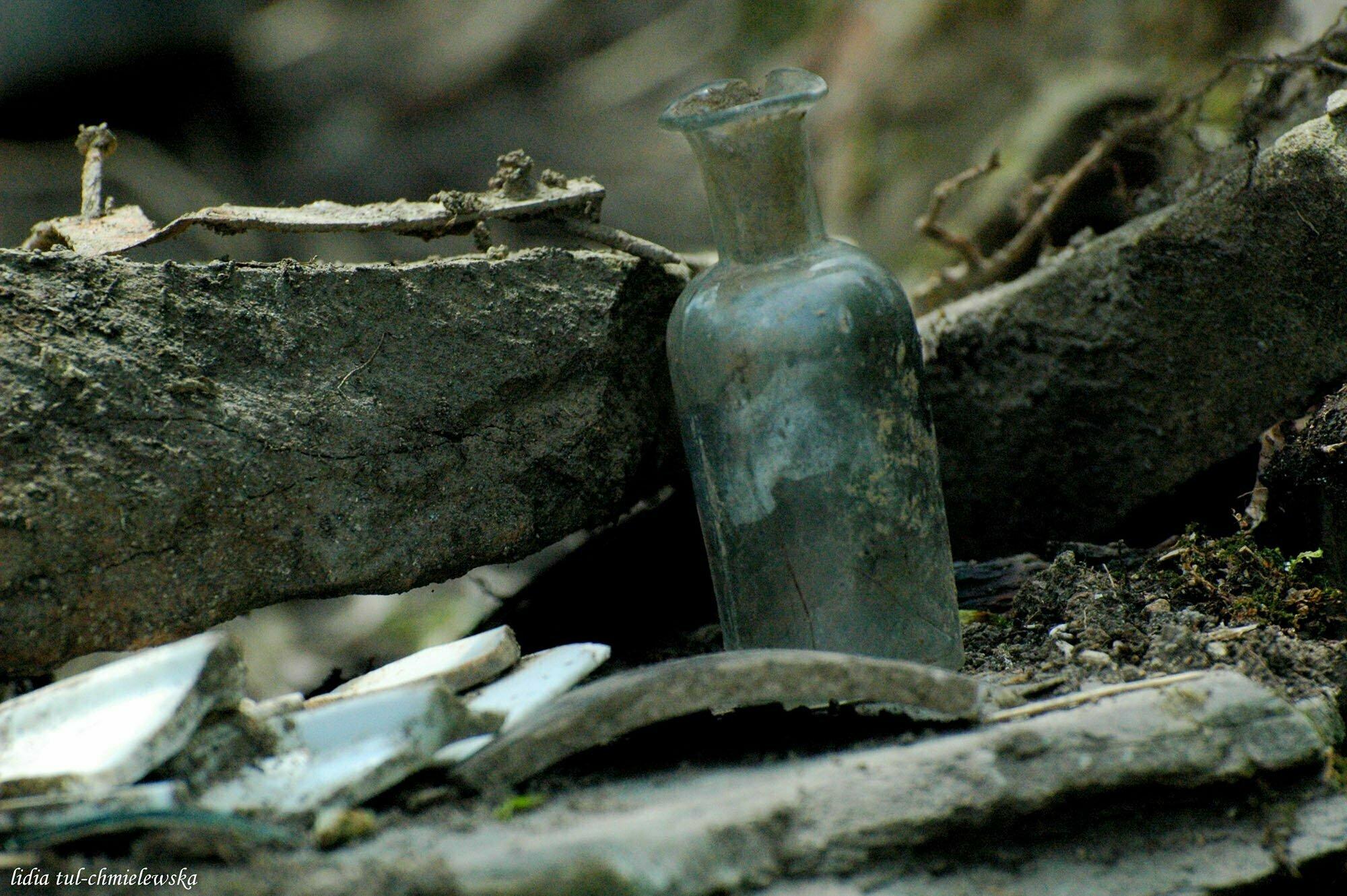 Ścieżka historyczna w Łopience / fot. Lidia Tul-Chmielewska