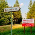 Znaki informujące, że właśnie tutaj odnajdziemy wieść Balnica / fot. Lidia Tul-Chmielewska