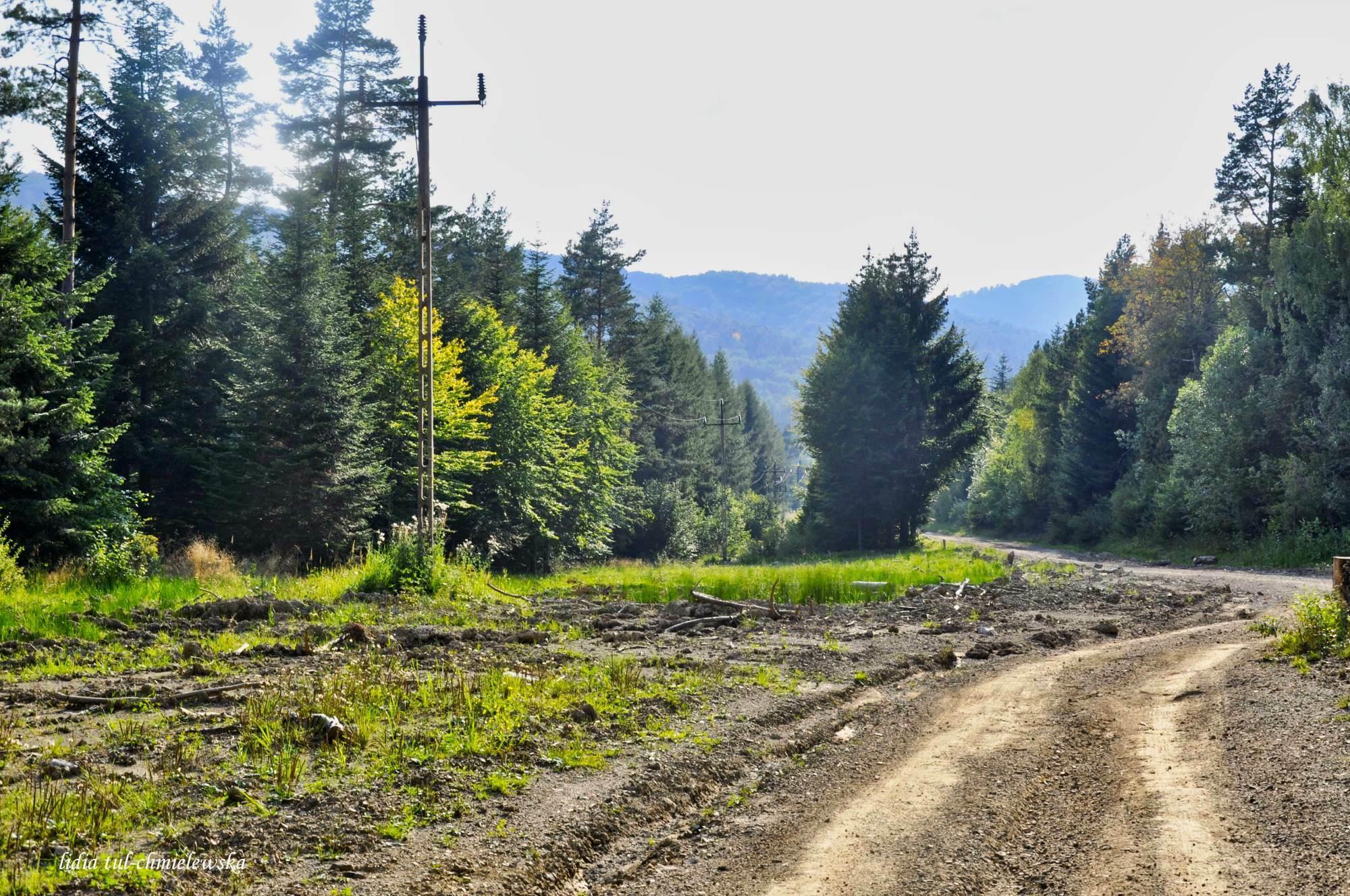 Balnica_bezludne tereny dawnej wsi(0)_11