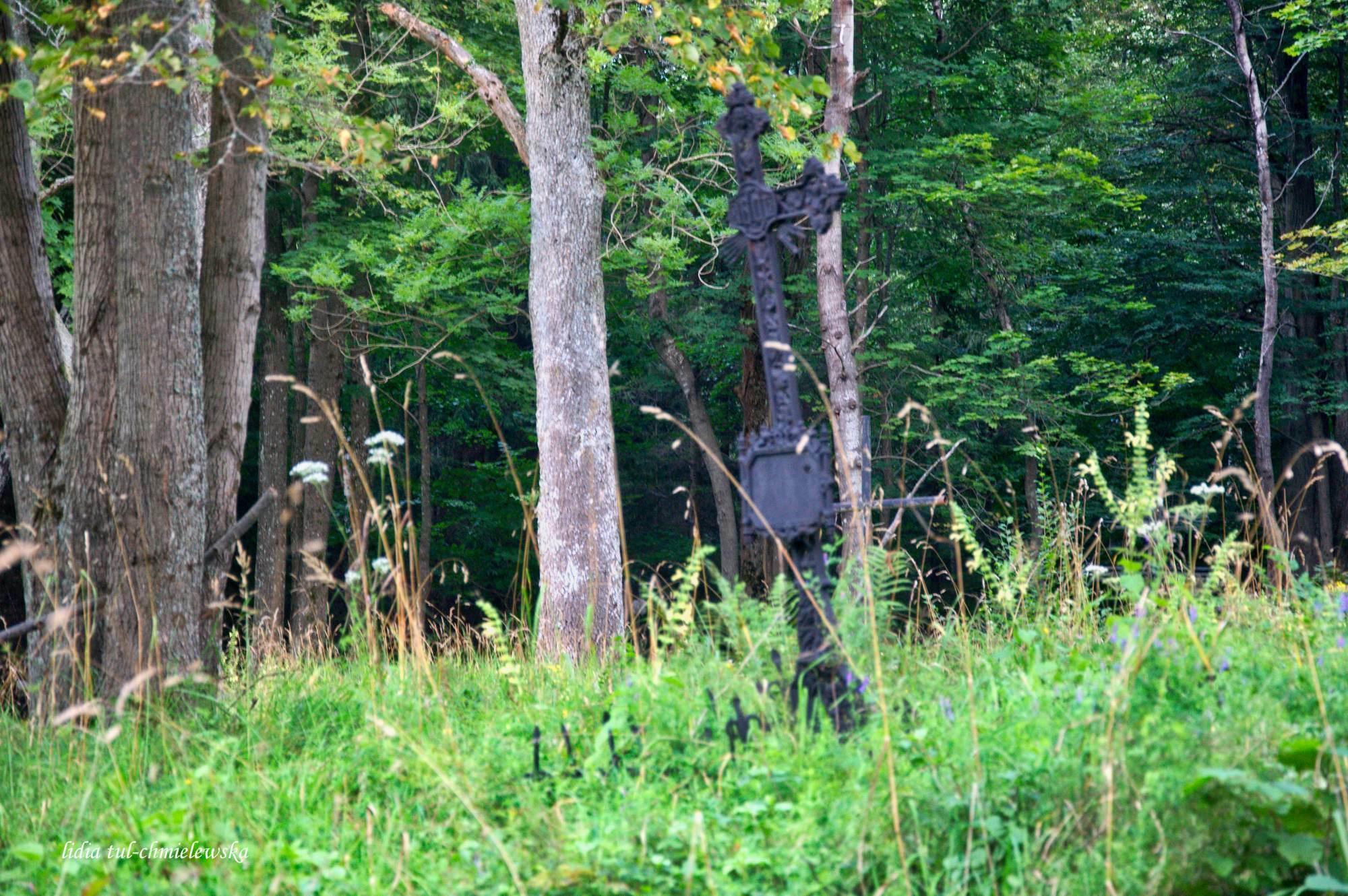 Balnica_nieliczne pozostałości po nagrobkach na wiejskim cmentarzu(0)_21