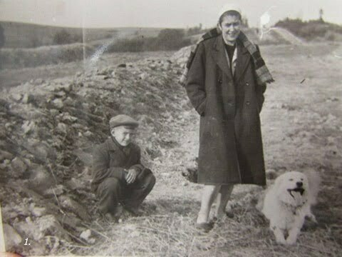 Ja w wieku około 8 lat, moja mama i pies Bari. Po lewej stronie kopiec z kartoflami. Zdjęcie zostało zrobione w Czarnej PGR w kierunku na Charwaty. / fot. Archiwum Lesława Grabowskiego
