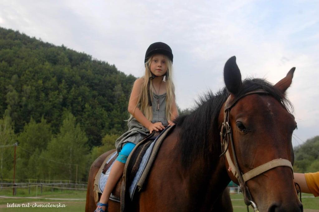 Konno w Bieszczadach /fot.Lidia Tul-Chmielewska/