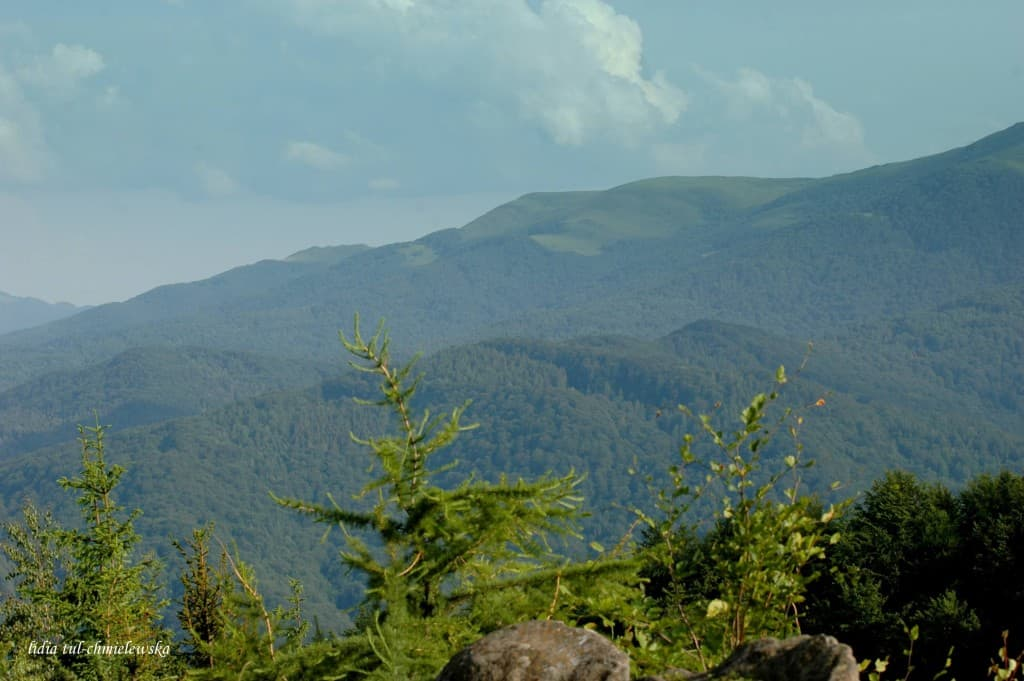 Dwernik Kamień - panorama