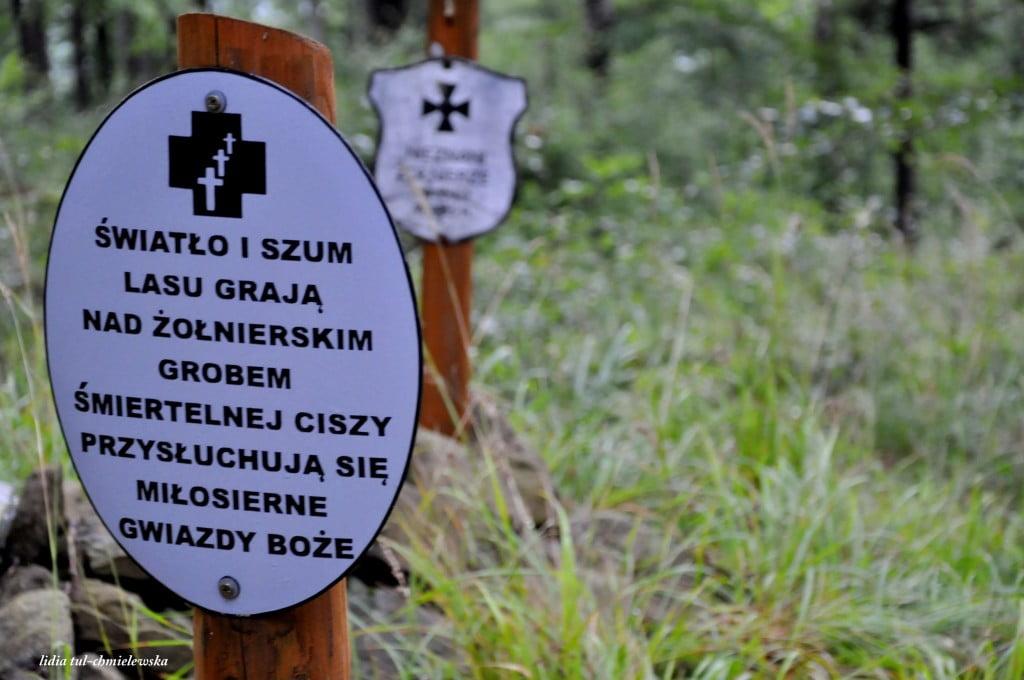 Cmentarz żołnierzy z I Wojny Światowej - Dwernik Kamień - fot. Lidia Tul-Chmielewska