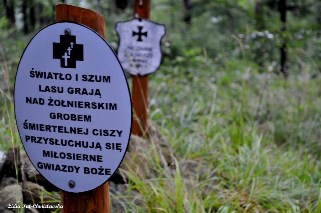 cmentarz wojenny Dwernik Kamień /fot. Lidia Tul-Chmielewska