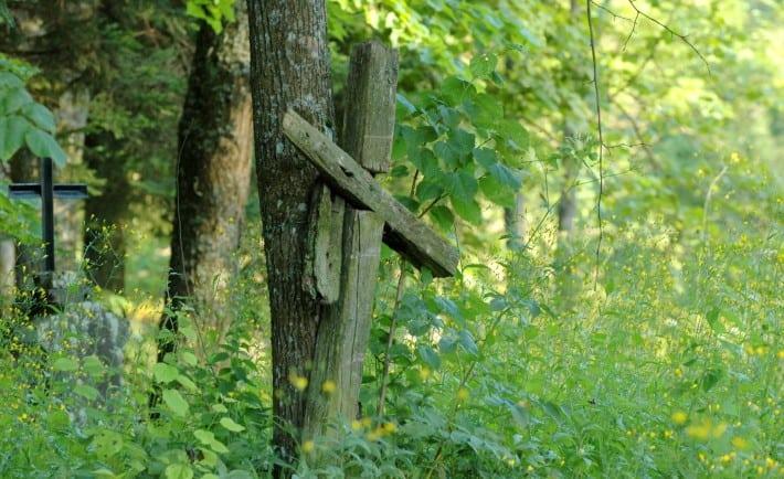 Cmentarz Łupków / fot. Lidia Tul-Chmielewska