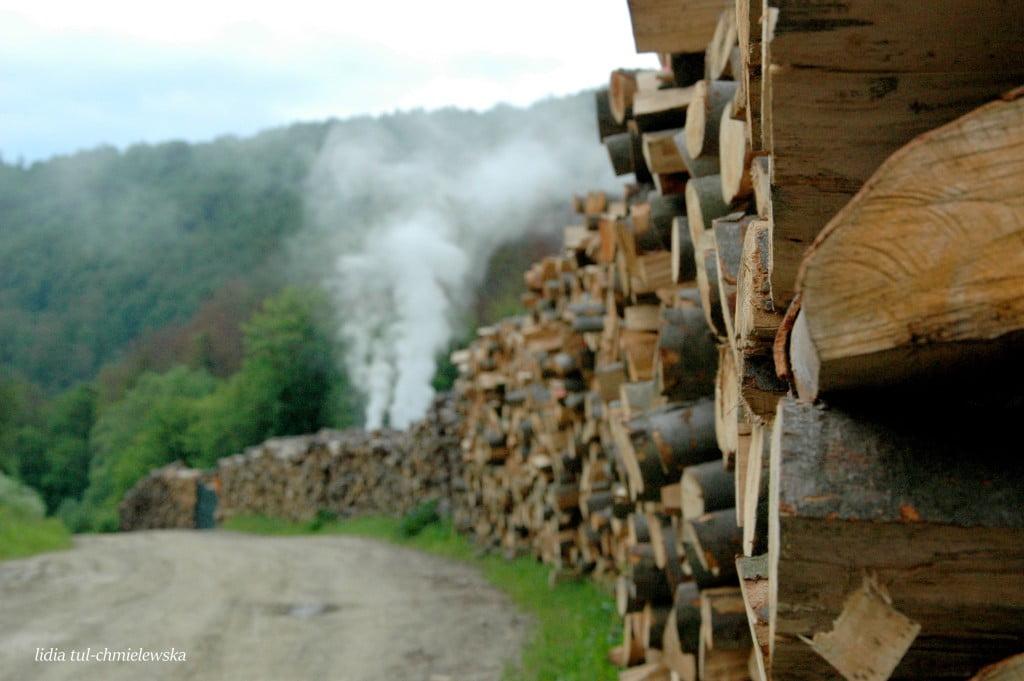 na wypale w drodze na Tyskową /fot. Lidia Tul-Chmielewska