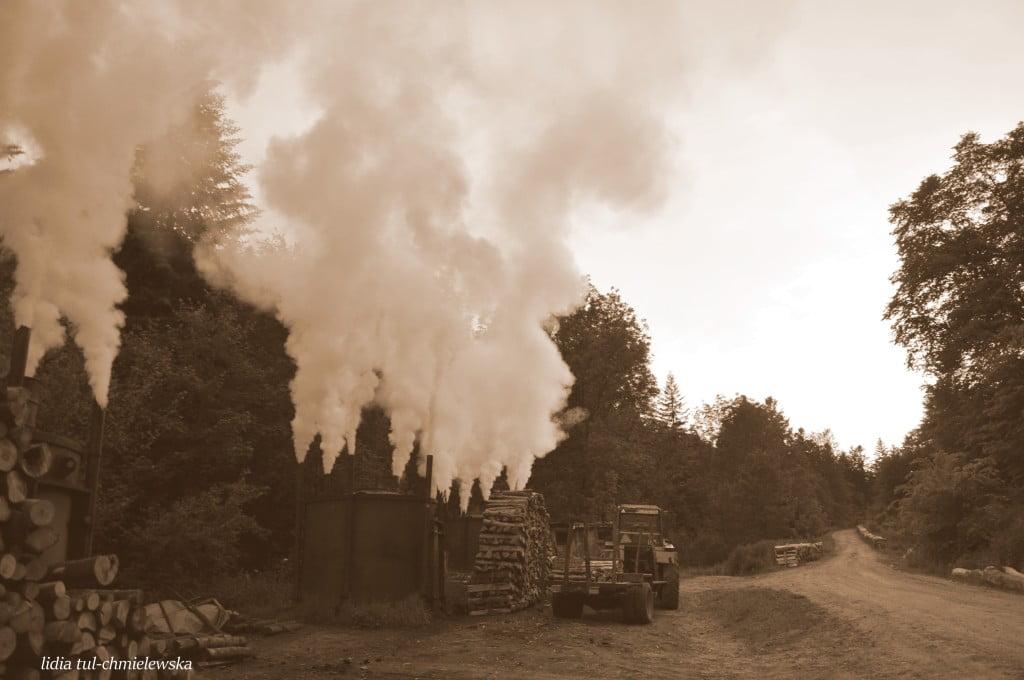 retorty w drodze na Łopienkę/nie istnieją/ fot. Lidia Tul-chmielewska