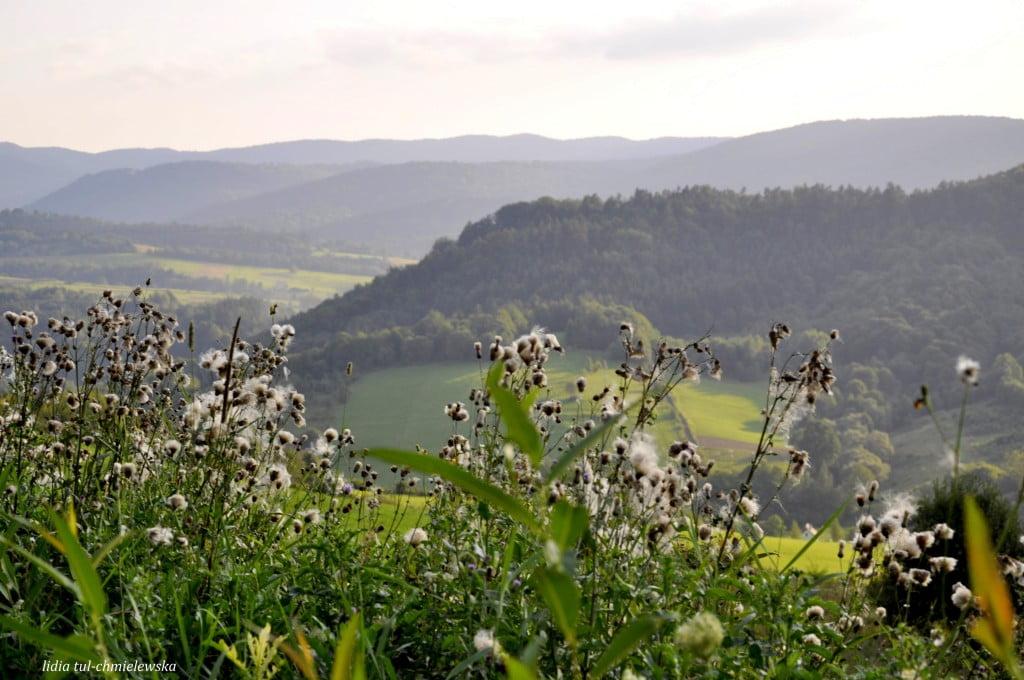 Widok z Plisza fot./Lidia Tul-Chmielewska