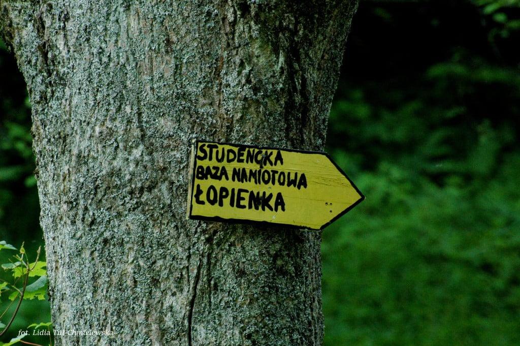 Studencka Baza Namiotowa w Łopience /fot. Lidia Tul-Chmielewska