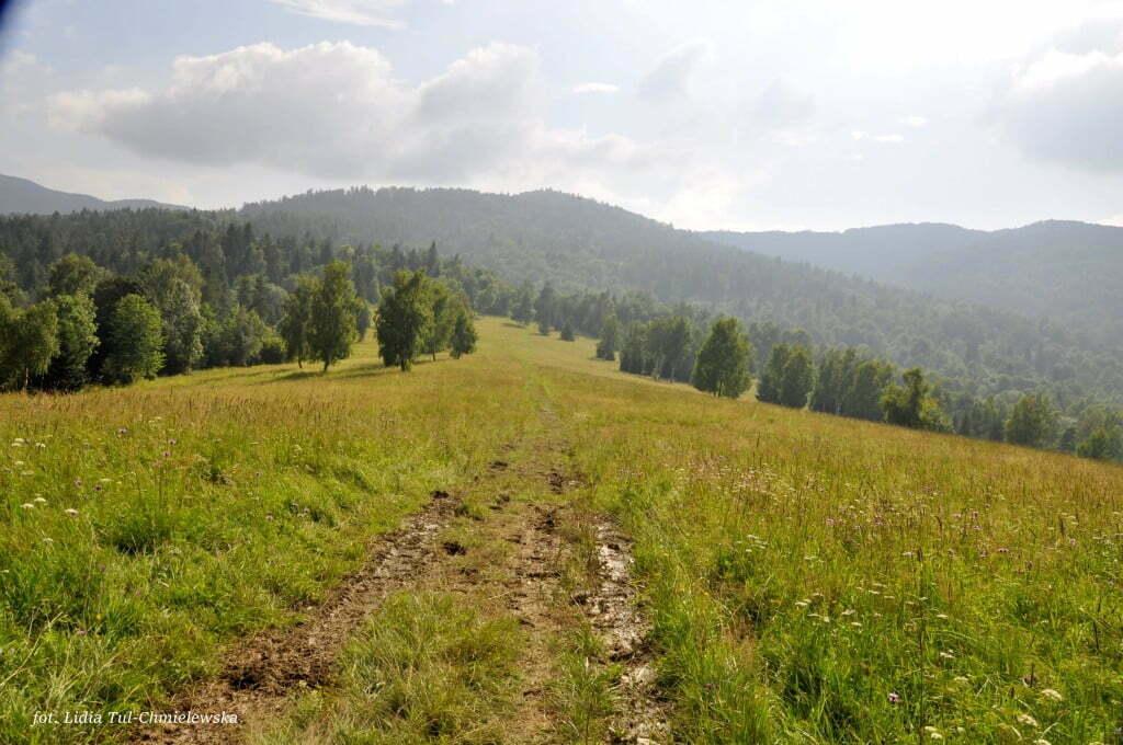 Majowe szlaki w Bieszczadach /fot. Lidia Tul-Chmielewska