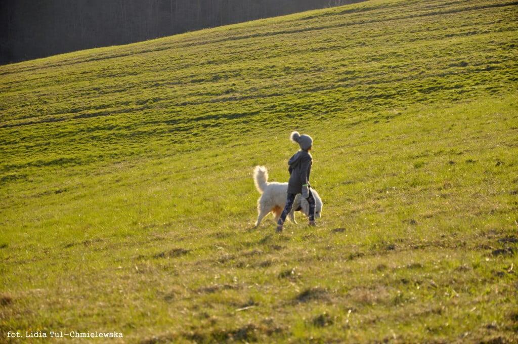 Spacer z psem /fot. Lidia Tul-Chmielewska