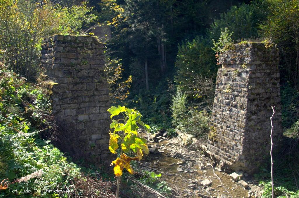 Ruiny wiaduktu kolejki fot. Lidia Tul-Chmielewska