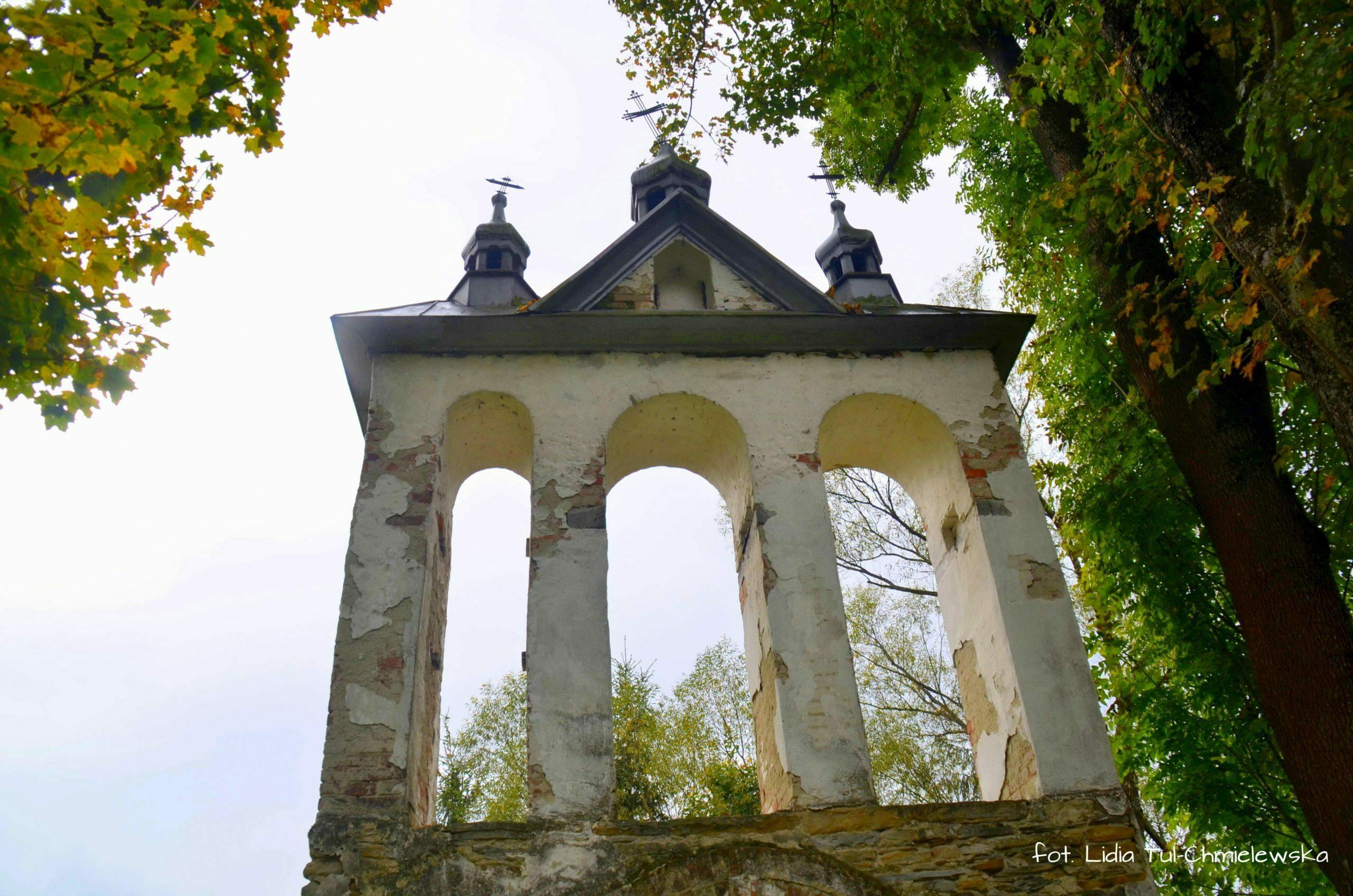 Dzwonnica, Liskowate / fot. Lidia Tul-Chmielewska