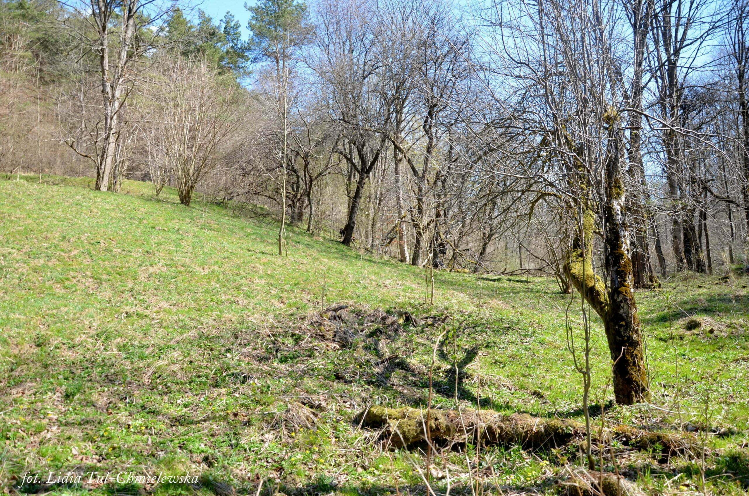 Naturalne ukształtowanie terenu wsi Choceń / fot. Lidia Tul-Chmielewska