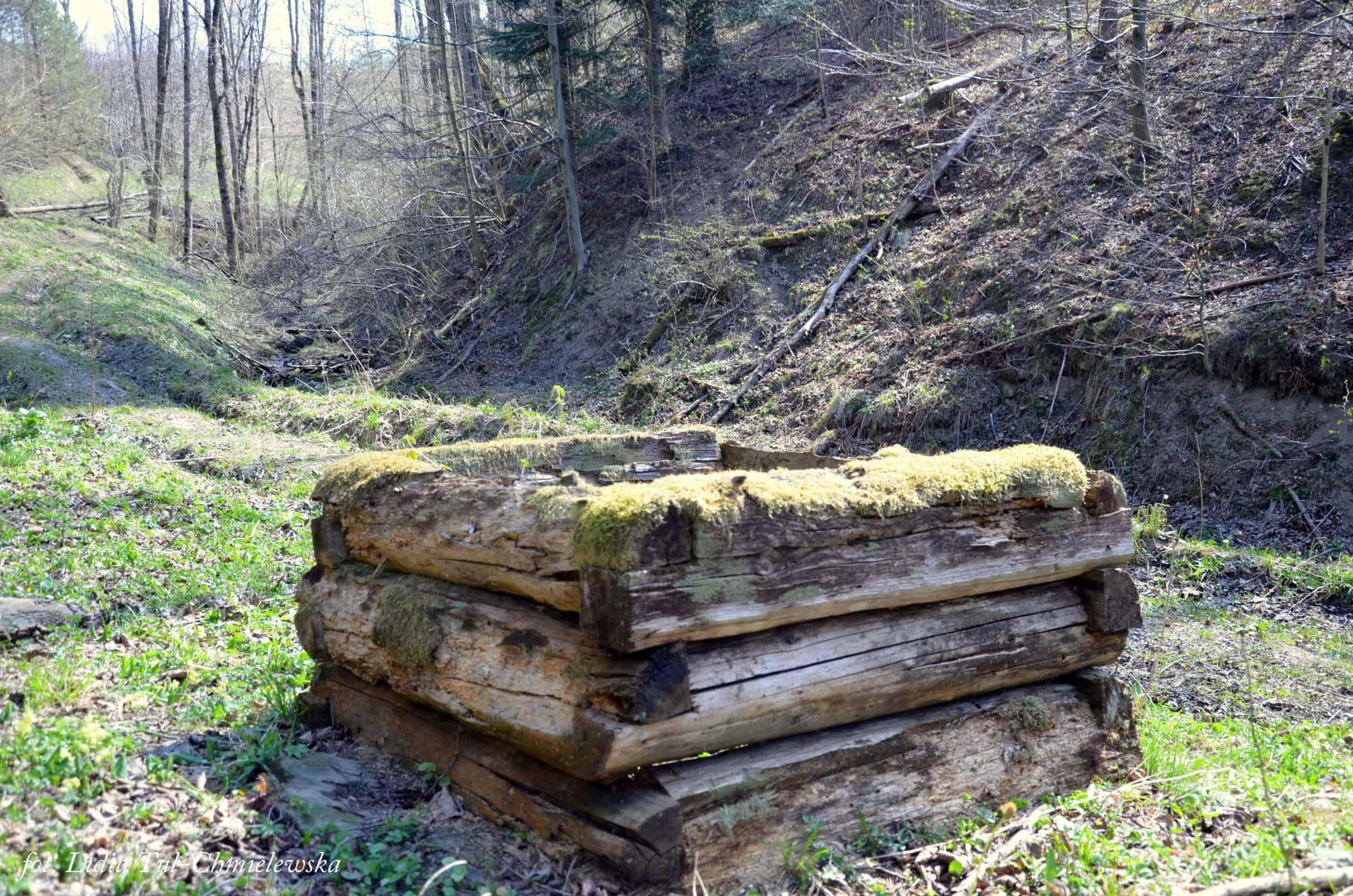Studnia Choceń / fot. Lidia Tul-Chmielewska