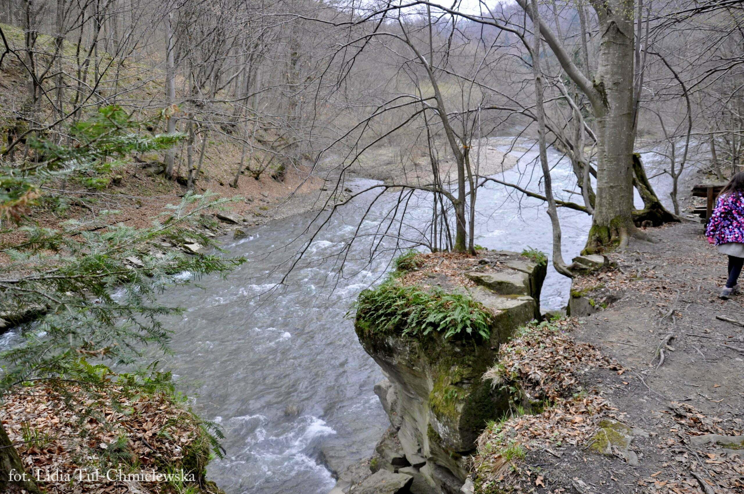 Rozpadliny skalne / fot. Lidia Tul-Chmielewska
