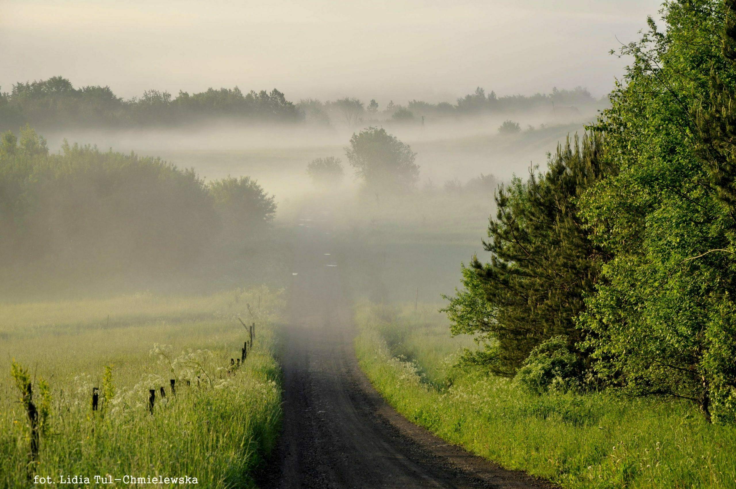 Droga wśród mgieł/fot. Lidia Tul-Chmielewska