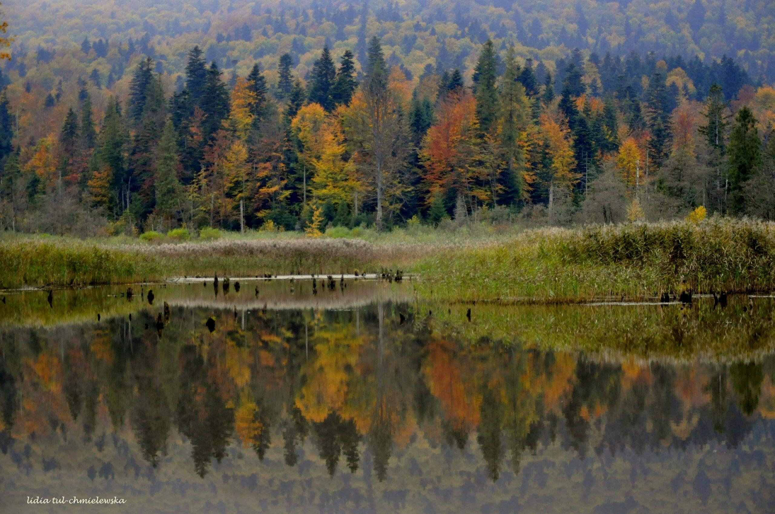 Jesień w jeziorze /fot. Lidia Tul-Chmielewska