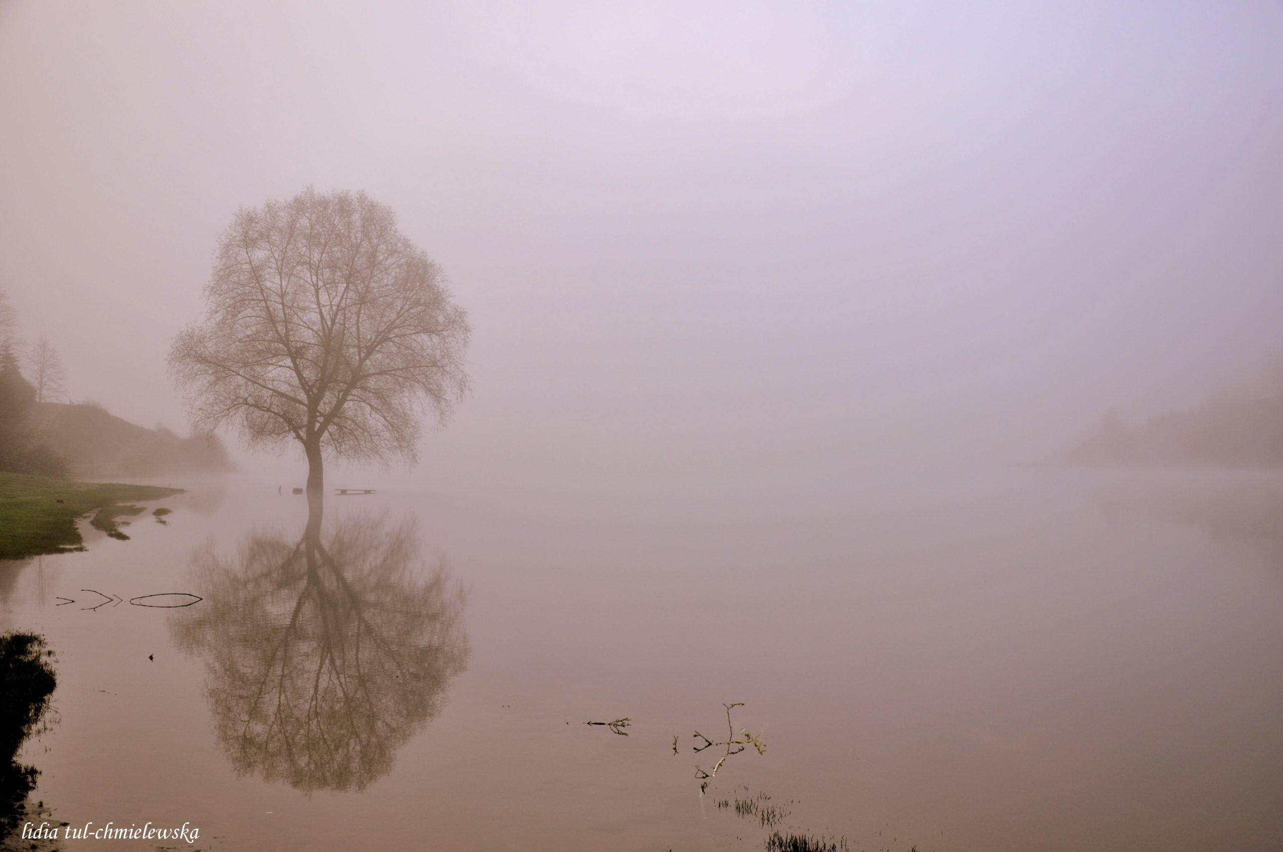 Samotność/ fot. Lidia Tul-Chmielewska