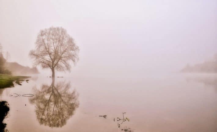 Bieszczadzkie mgły to wyzwanie dla fotografa. Warto mu sprostać, bo zachowany obraz może przyprawić o gęsią skórkę / fot. Lidia Tul-Chmielewska