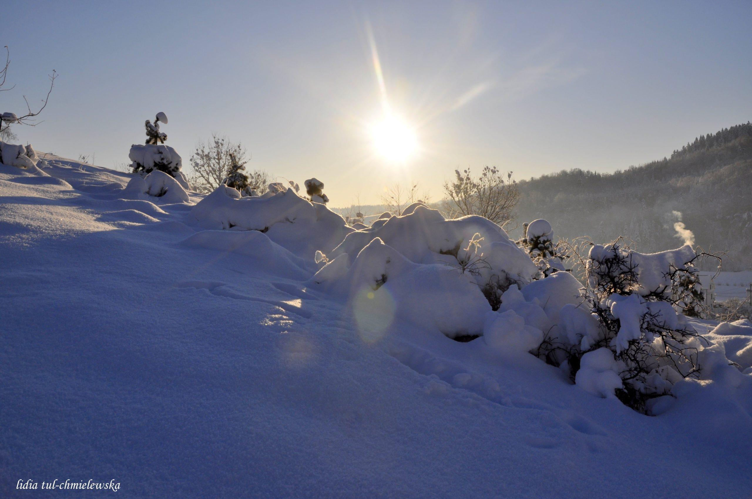 Śnieg i słońce/ fot. Lidia Tul-Chmielewska