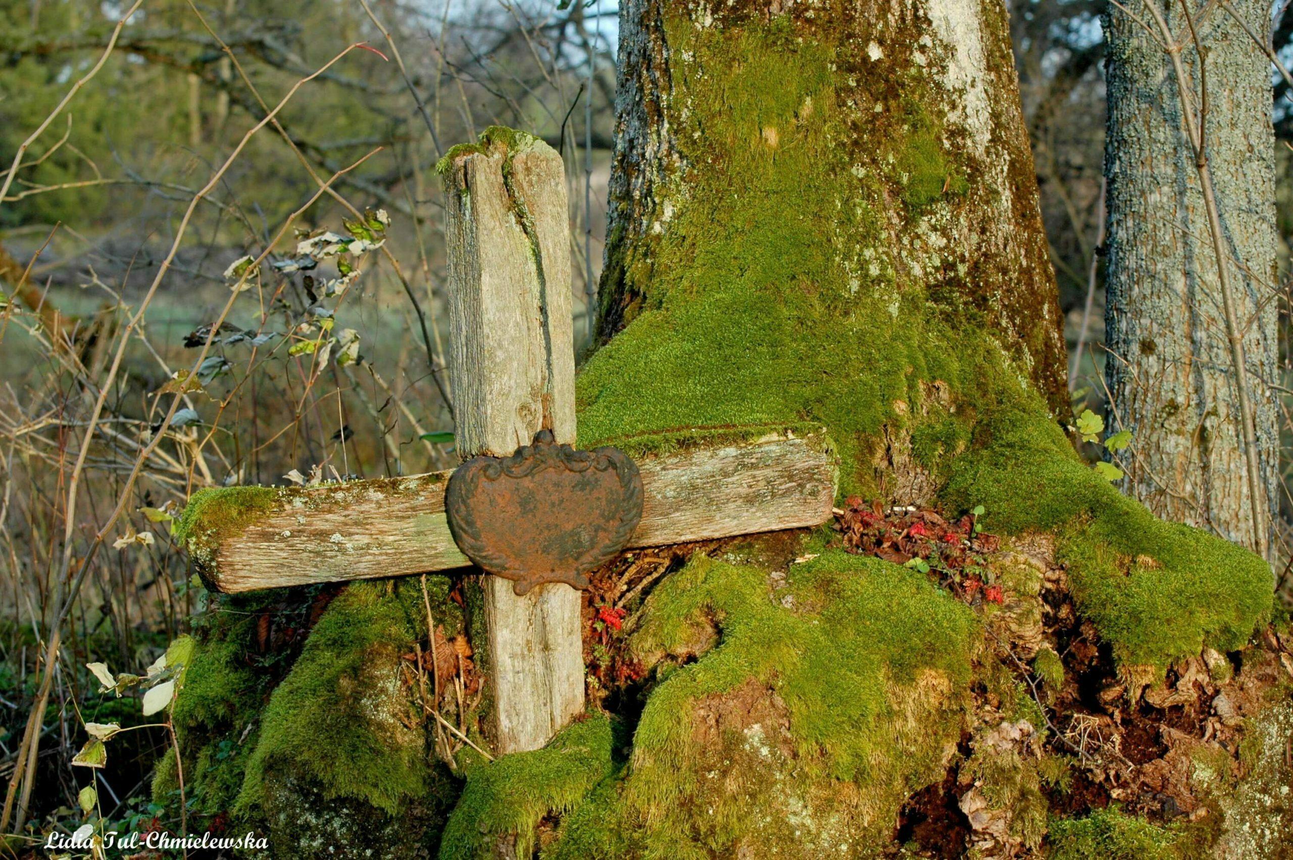 Stary cmentarz w Łupkowie / fot. Lidia Tul-Chmielewska