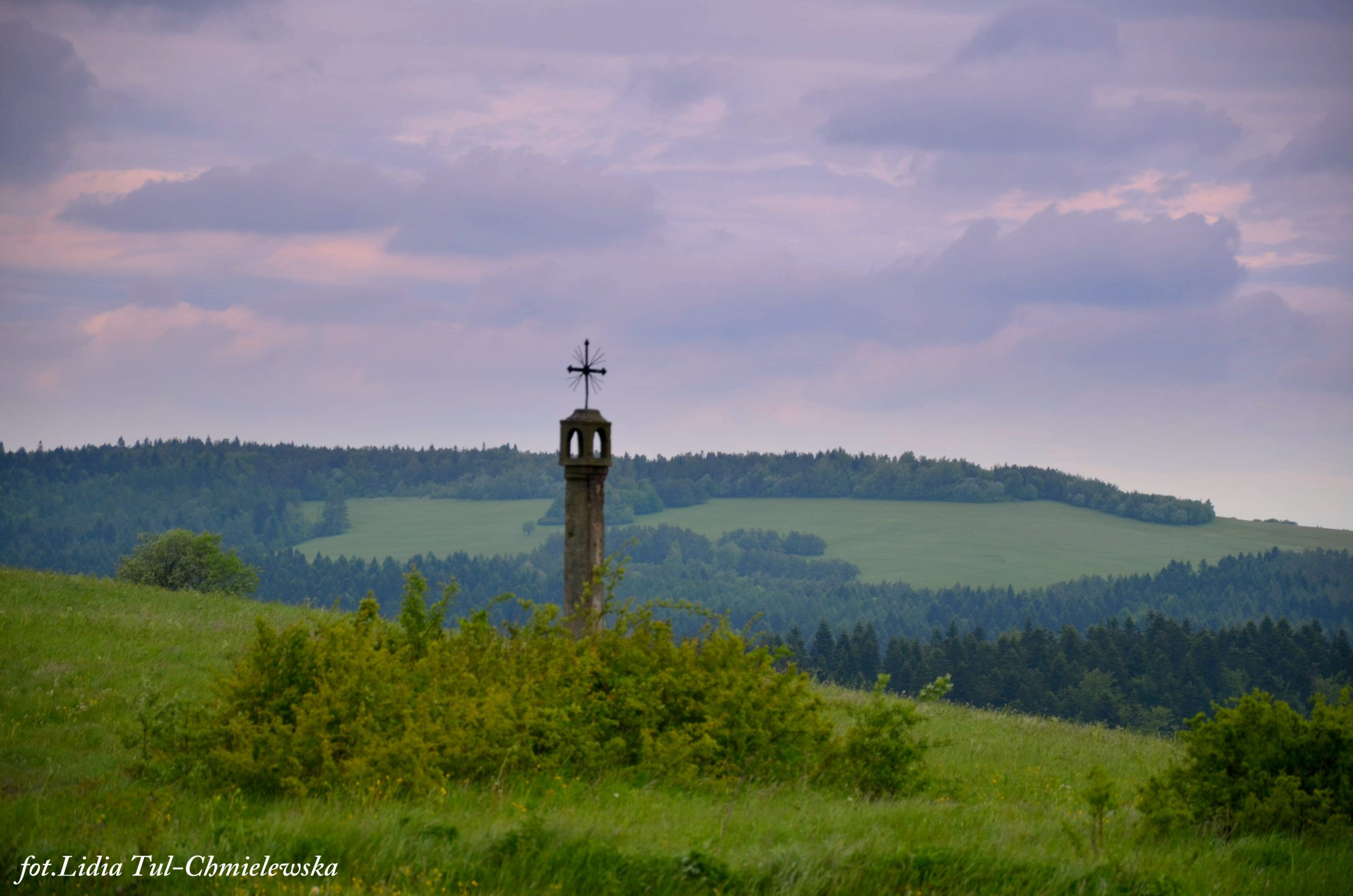 W szczerym polu, okolice Królik Wołoski / fot. Lidia Tul-Chmielewska