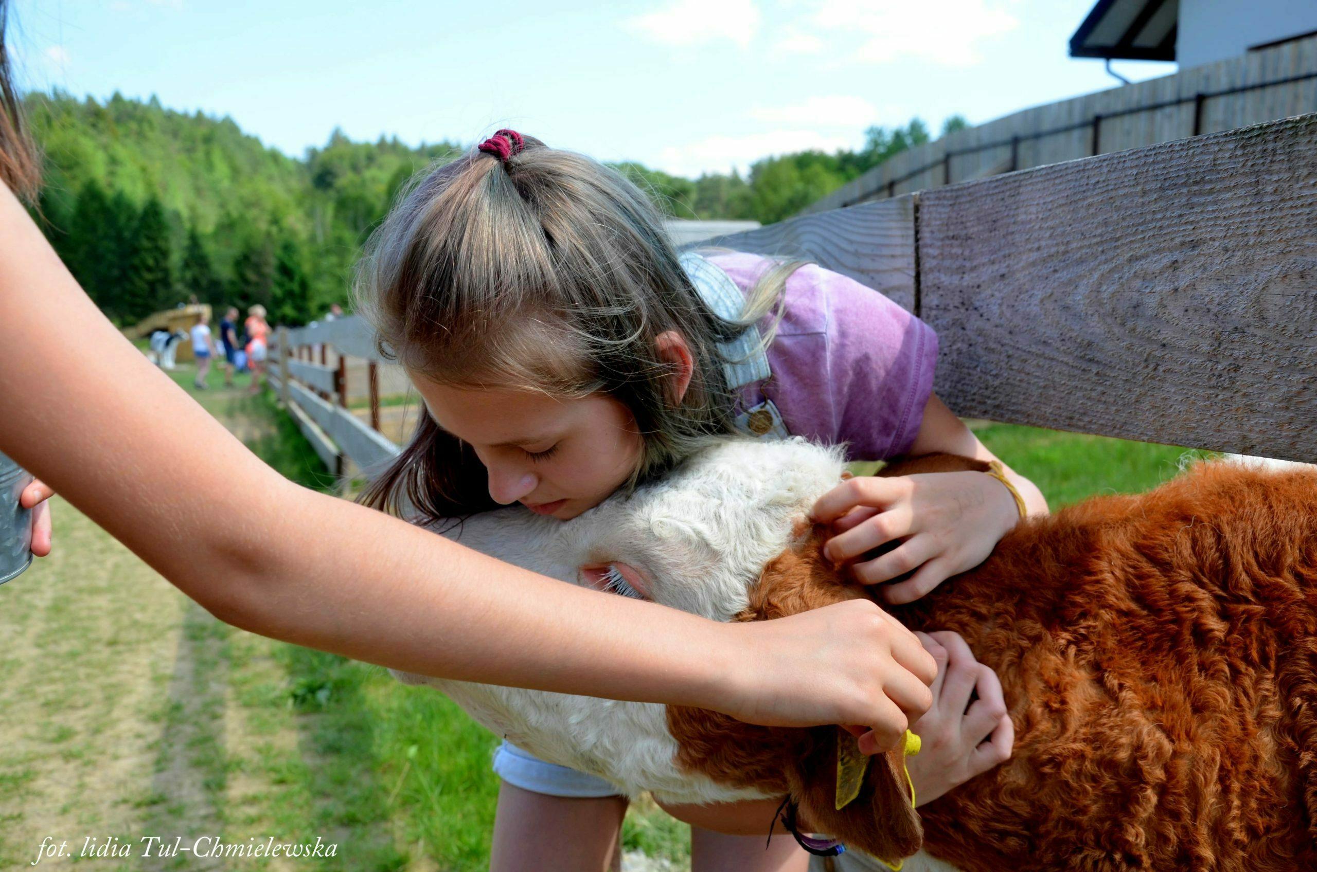 Przytulanie Wiejskie zoo fot. Lidia Tul-Chmielewska