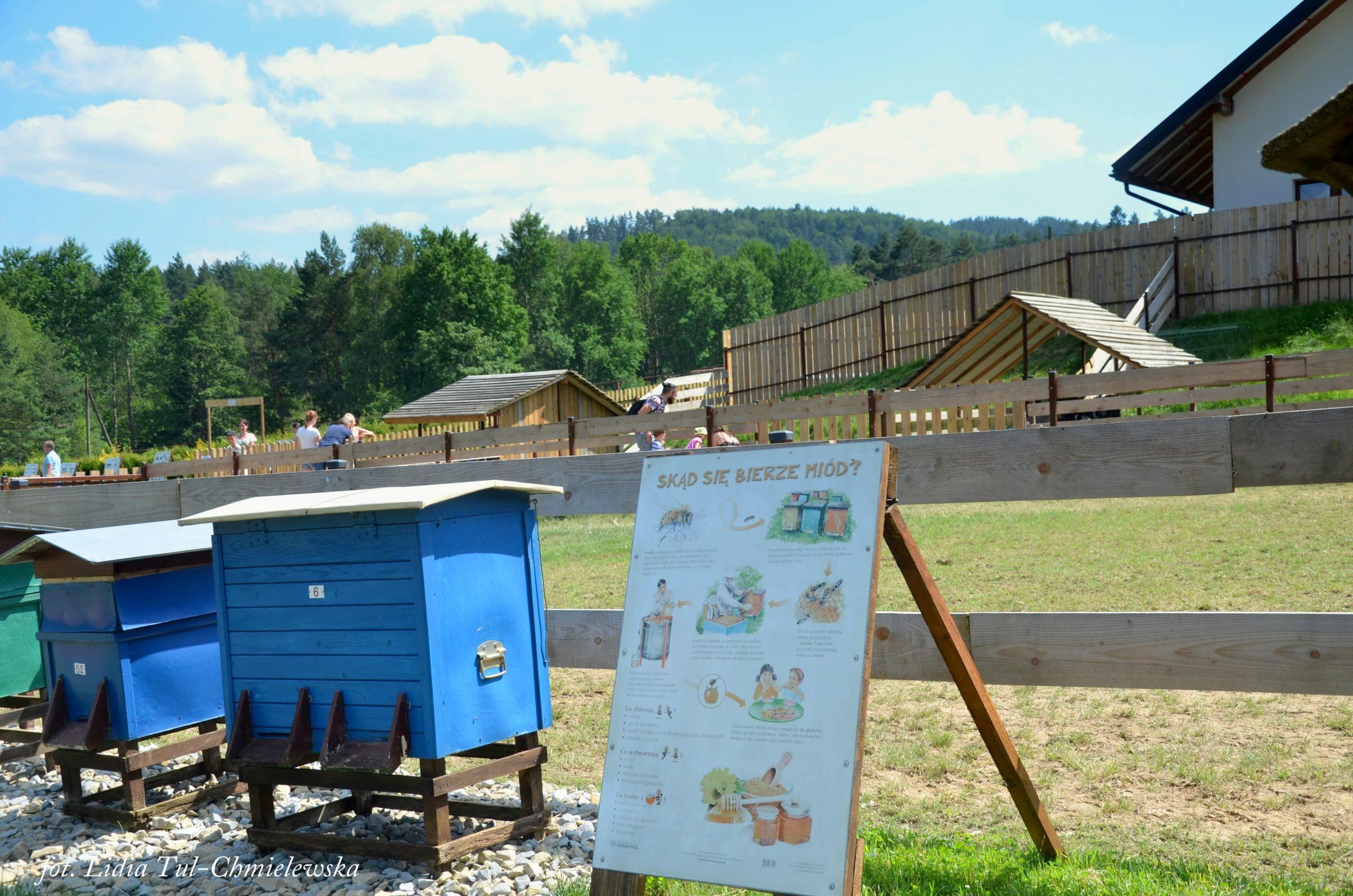 Wiejskie zoo edukacja fot. Lidia Tul-Chmielewska