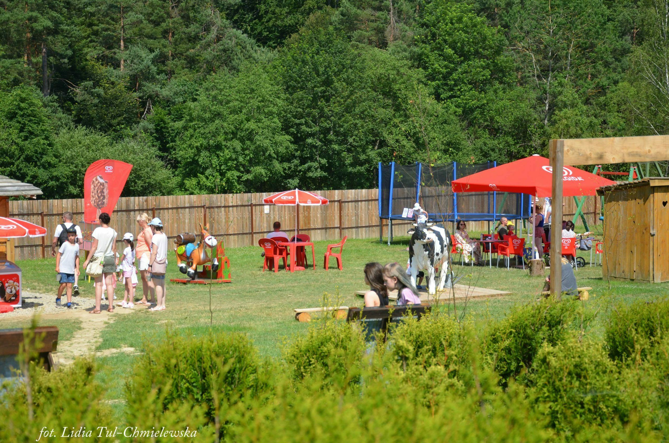 Wiejskie zoo place zabaw fot. Lidia Tul-Chmielewska