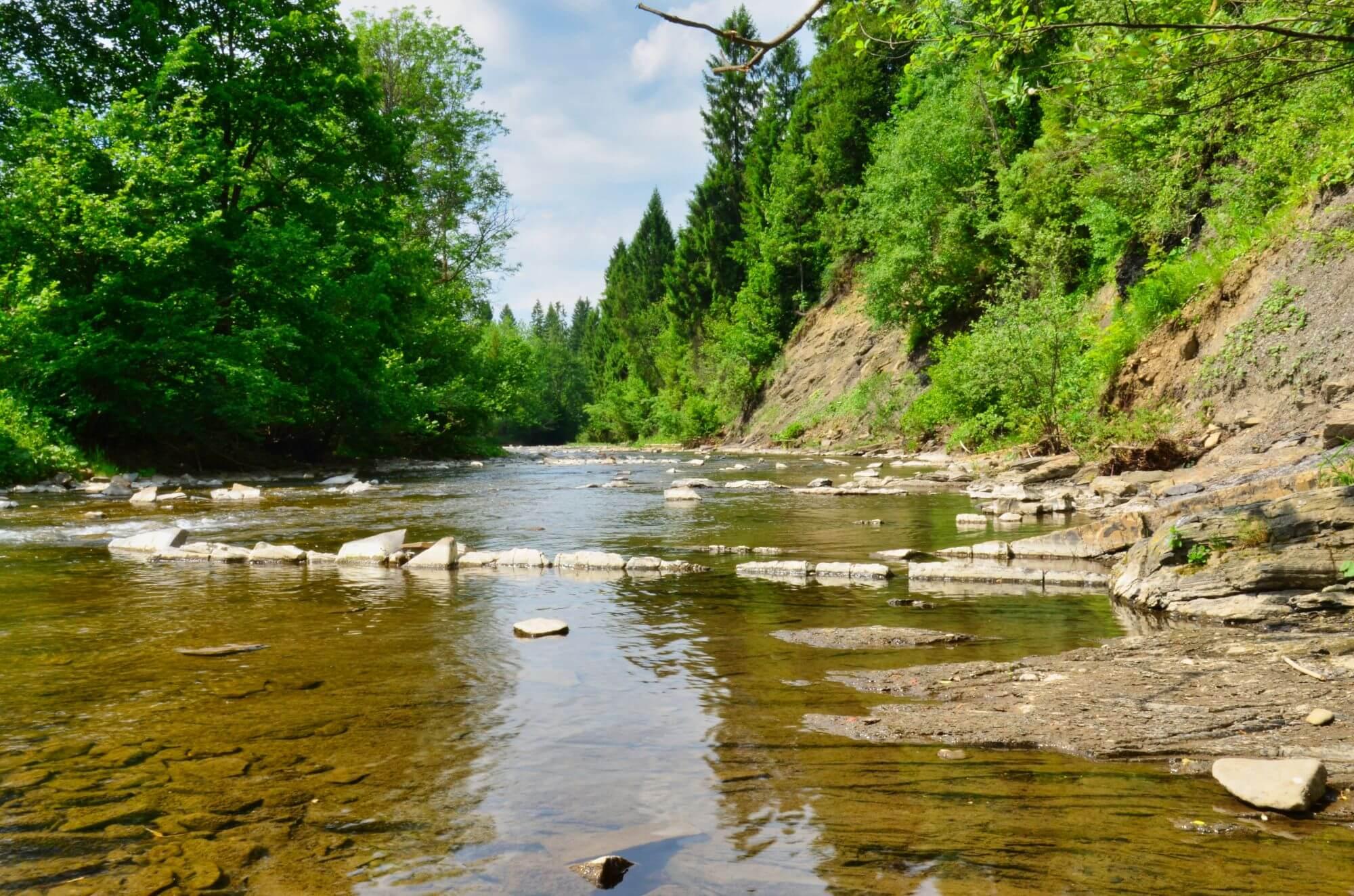 Rzeka Wetlinka