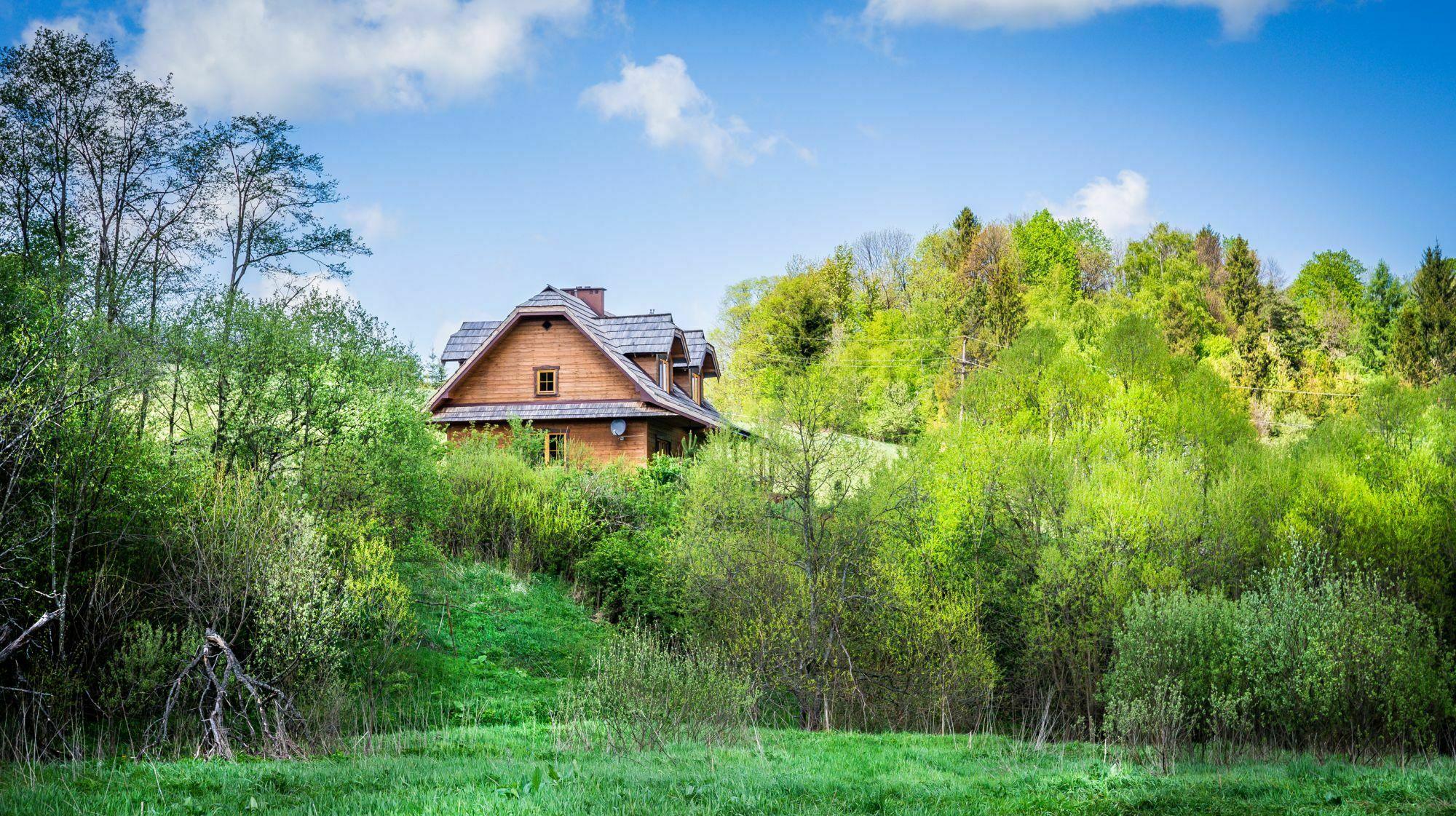 Dom w bieszczadzkim lesie / fot. shutterstock.com