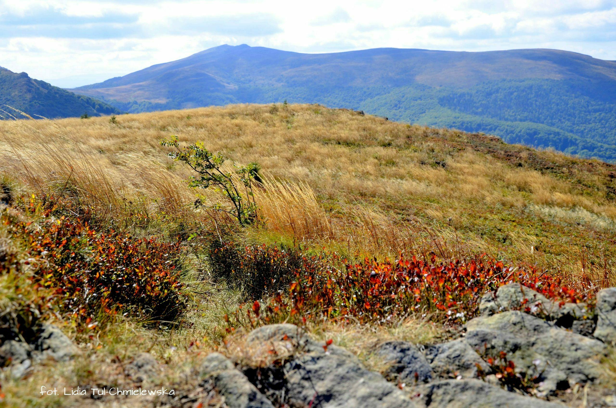 Jesienią góry są najszczersze fot. Lidia Tul-Chmielewska