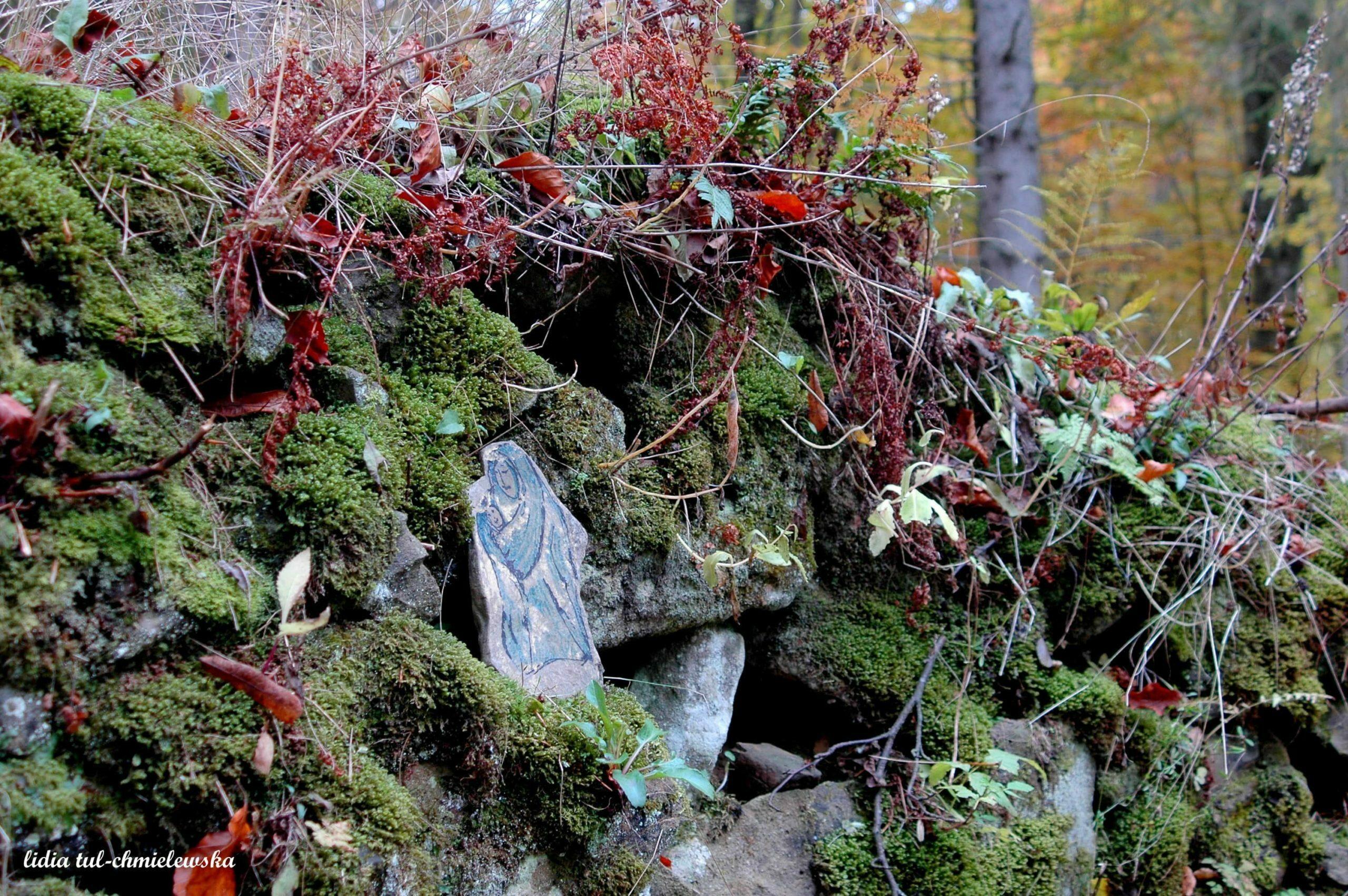 Ślady nieistniejących wsi fot. Lidia Tul-Chmielewska