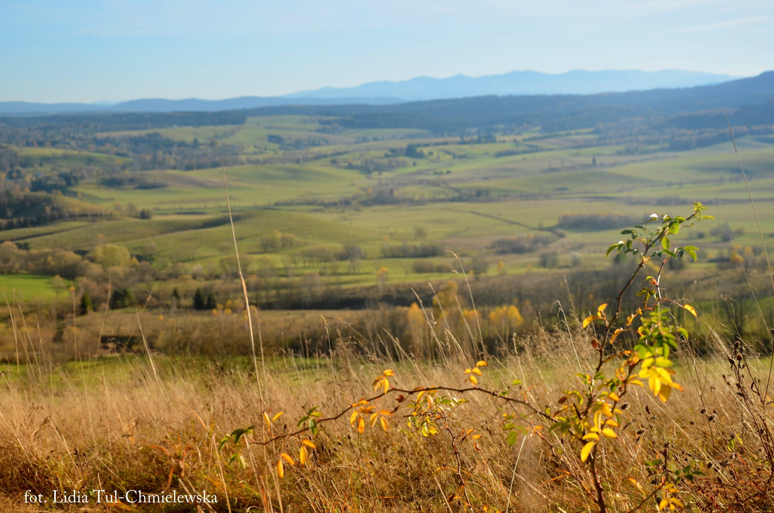 Listopad i Kraina Lipecka fot. Lidia Tul-Chmielewska