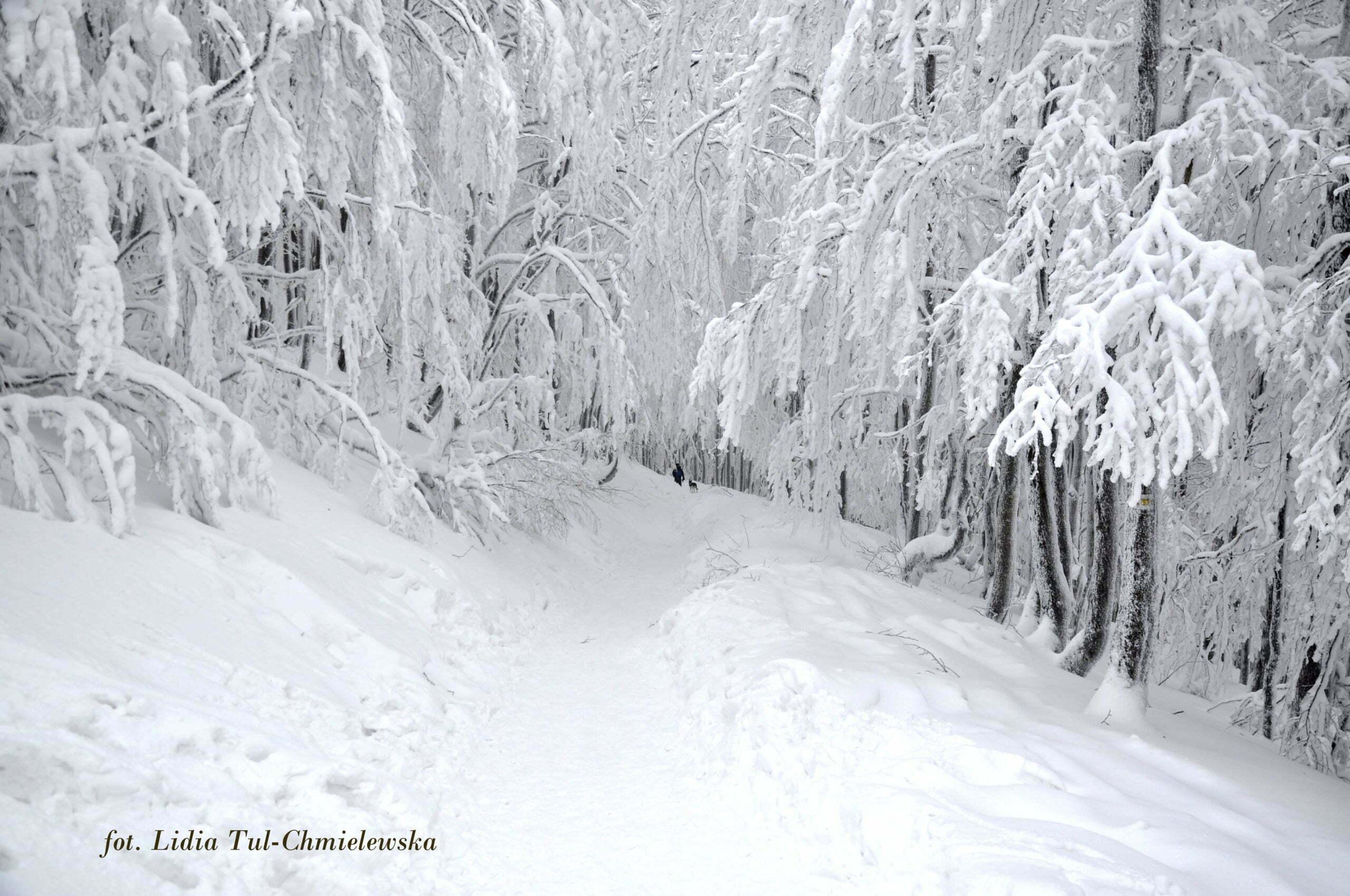 Bieszczady zimą są bajkowe fot. Lidia Tul-Chmielewska