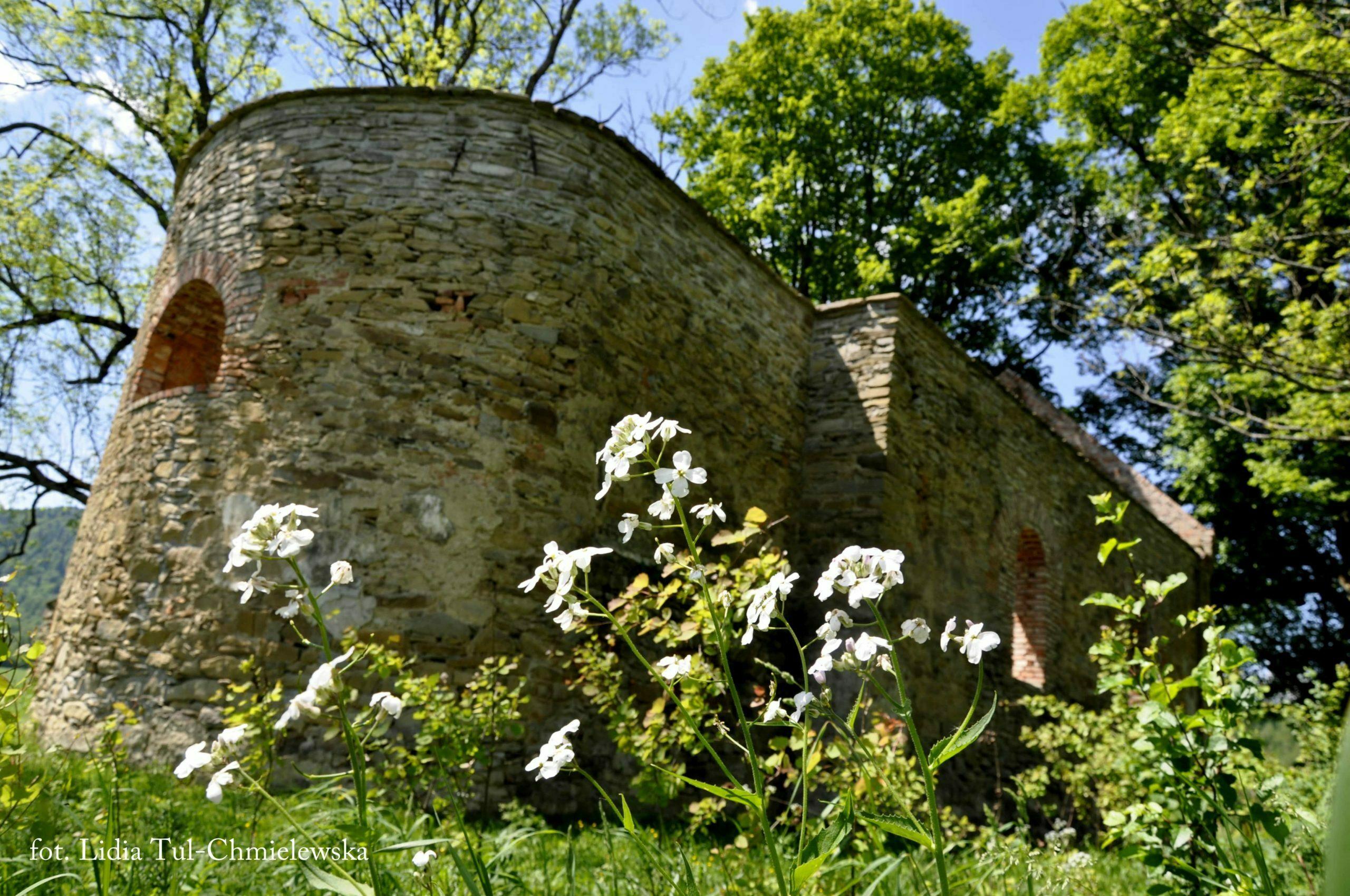 Ruiny cerkwi w Krywe / fot. Lidia Tul-Chmielewska