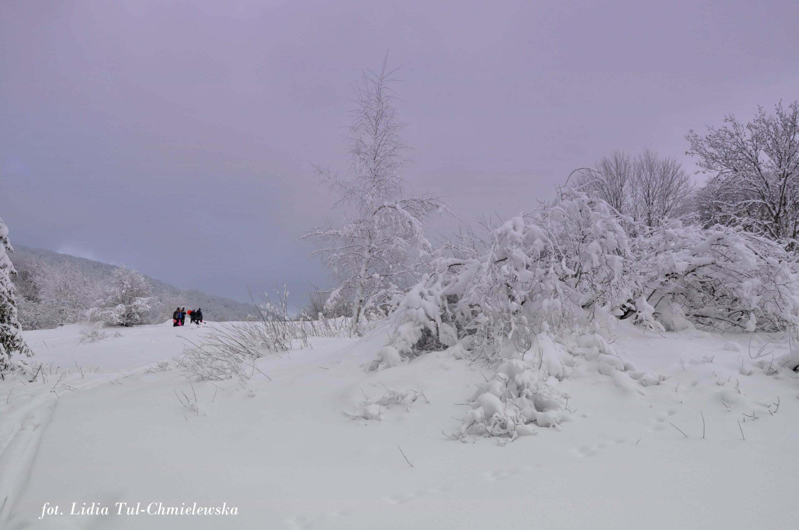 Zima w Bieszczadach fot. Lidia Tul-Chmielewska