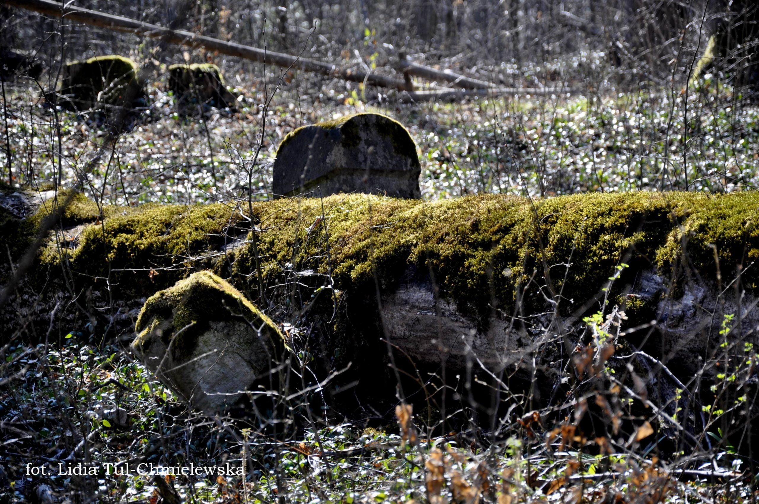 Cmentarz przycerkiewny Horodek fot. Lidia Tul-Chmielewska-