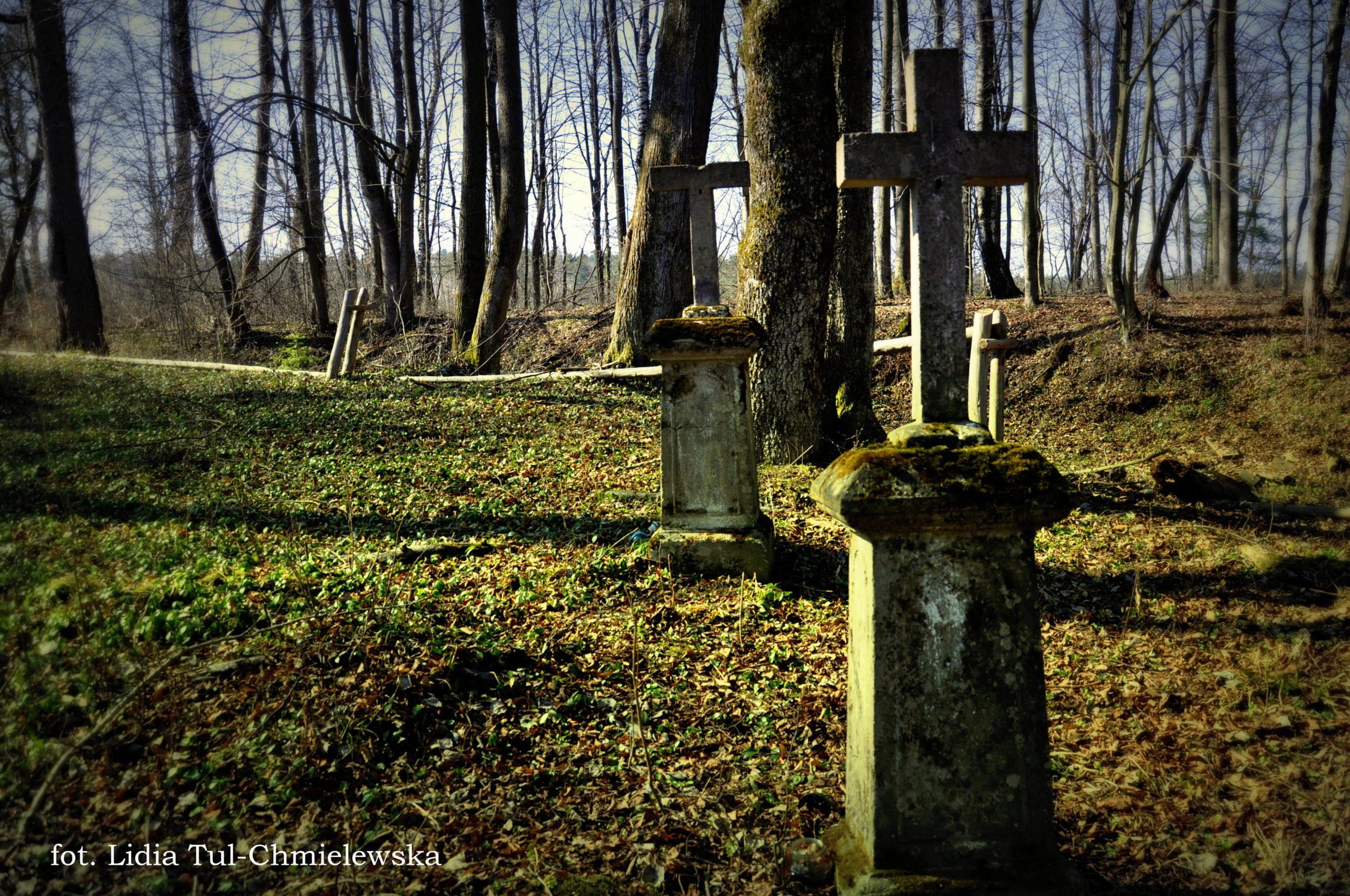 Pozostałości cmentarza w Horodku fot. Lidia Tul-Chmielewska-