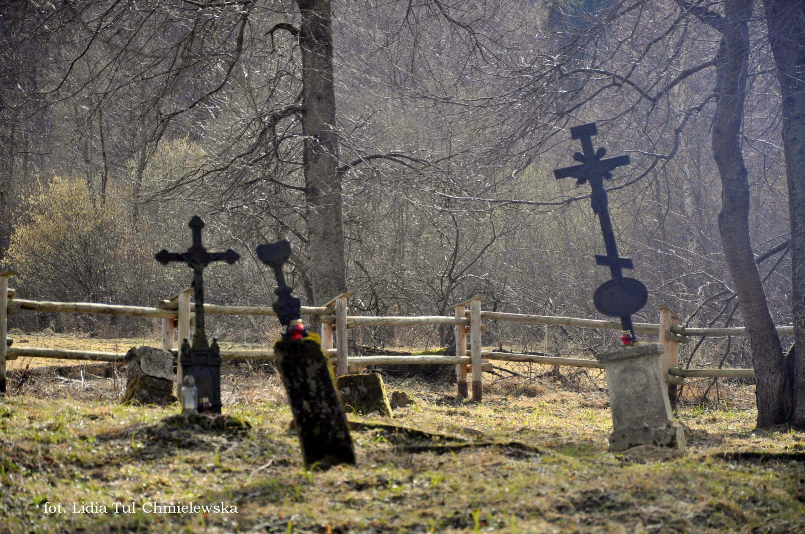 Cmentarz na Tworylnym fot. Lidia Tul-Chmielewska
