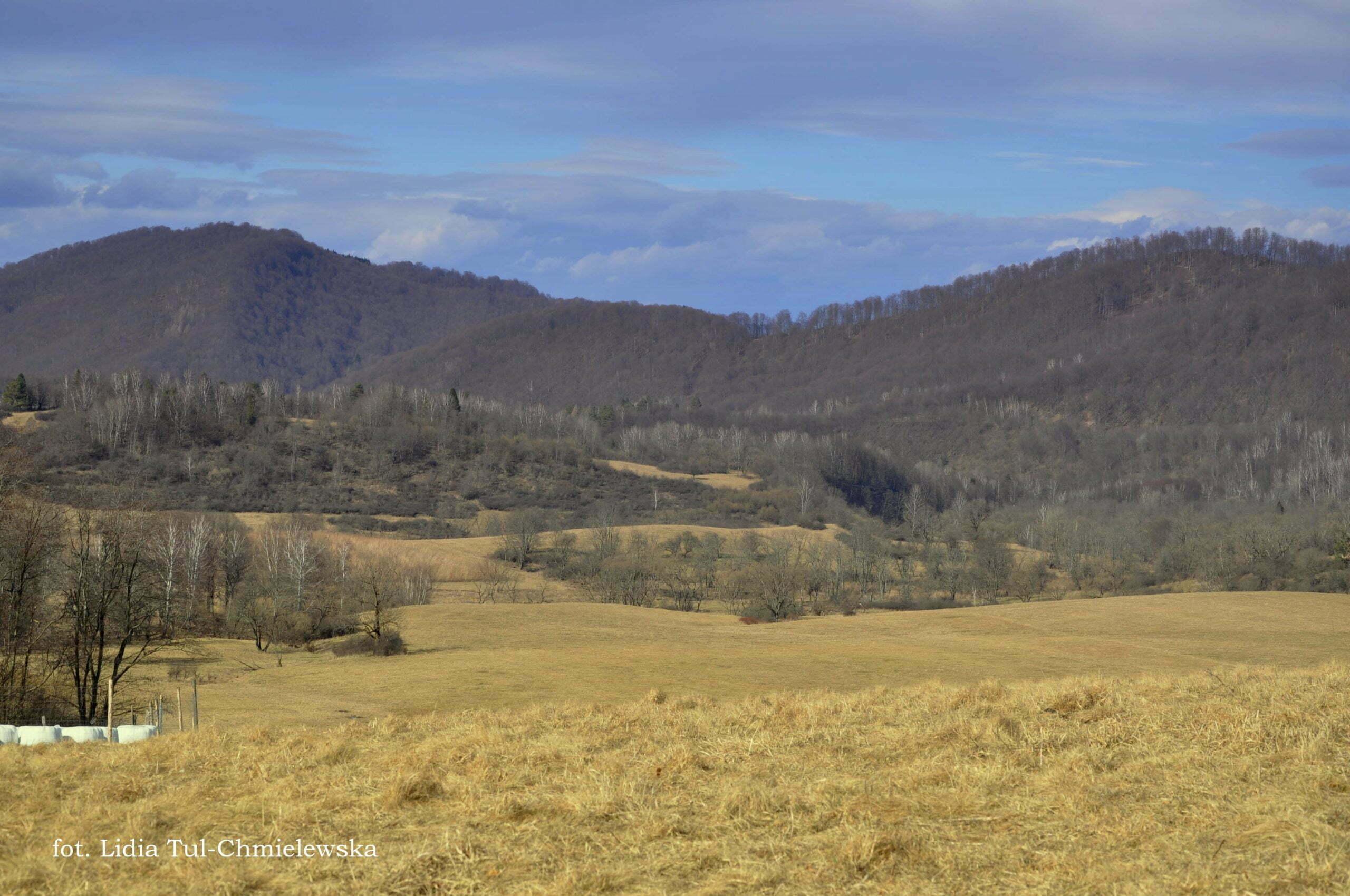Dolina Tworylnego fot. Lidia Tul-Chmielewska